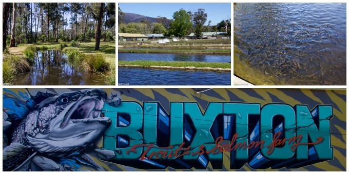 Buxton-Collage